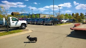 David Stanley Chevrolet dog park in Norman, OK parking lot
