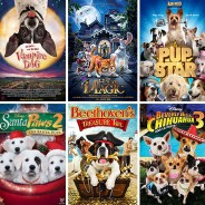 18 of the Best Pet Movies on Netflix
