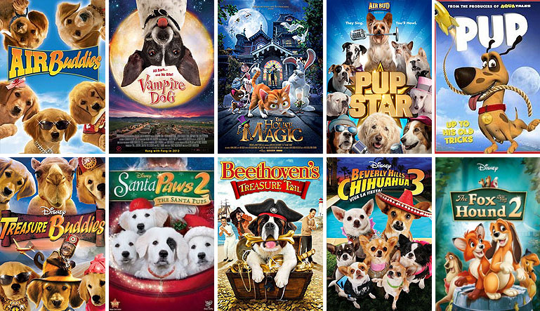 18 of the Best Pet Movies on Netflix | Sunset Veterinary Clinic