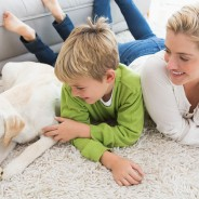 5 Common Household Pet Dangers to Avoid