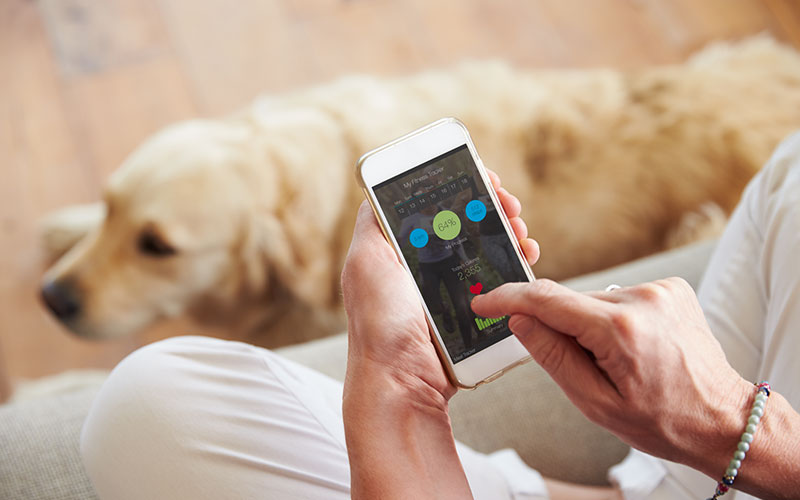 Pet Apps for Smartphone